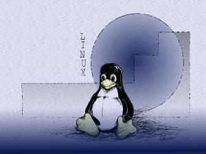 Linux Wallpaper (20)